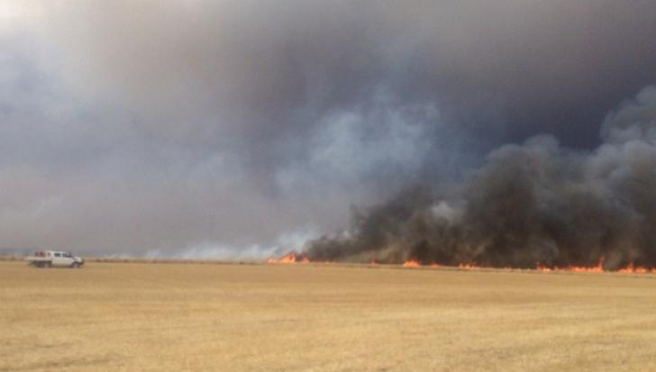 Autostrada A1 Bucureşti - Piteşti, blocată de un incendiu de vegetaţie
