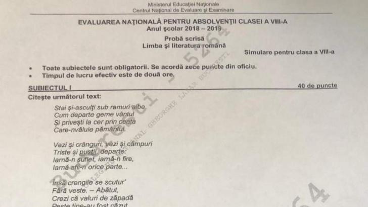 Subiecte simulare Română 2019 clasa a 8-a și clasa a 7-a