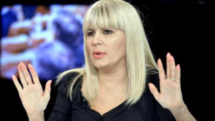 Elena Udrea face acuzații dure la adresa Înaltei Curți de Casație și Justiție