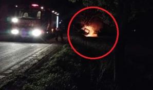 Accident îngrozitor în Botoșani