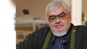 Andrei Pleşu: Ce mă face să mă retrag din viața publică?