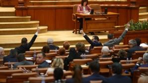Coduri penale - vot Camera Deputaților
