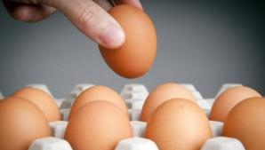 Cum ne dăm seama dacă ouăle sunt vechi? Ai nevoie doar de un pahar cu apă