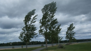 Veşti proaste de la meteo: Cod galben de ploi şi vânt puternic pentru toată ţara