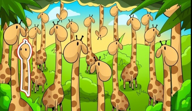 Șarpe ascuns între girafe