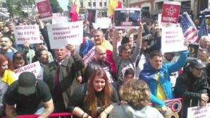Planul lui Dragnea pentru finalul campaniei: mega-miting cu 100.000 de oameni în alb, la București / Foto: Arhivă