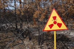 Dezastrul de la Cernobîl - Pădurea Roșie