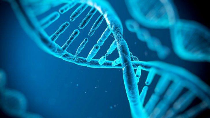 O mutație genetică ar putea să-i facă pe oameni mai puternici decât își imaginează