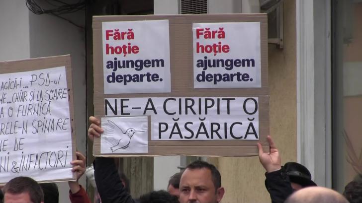 <p>Proteste la Arad</p>