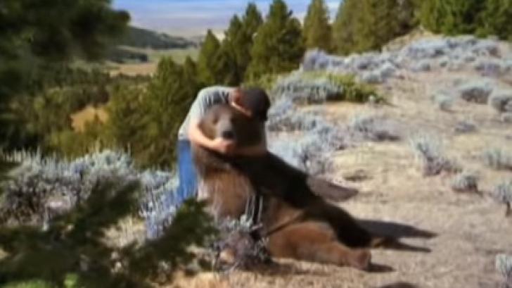 A salvat un pui de urs rămas orfan. După 6 ani, animalul i-a făcut ceva teribil!