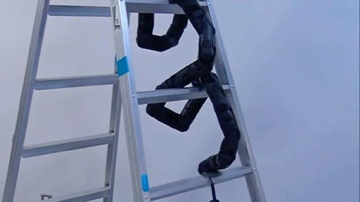 Cea mai ciudată invenție a japonezilor: șarpele robot care urcă pe scară