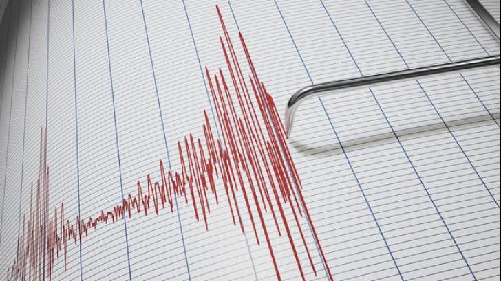 Cutremur de 7,3 grade în Indonezia