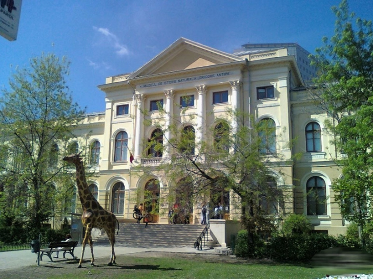 Scandalul Antipa. Directorul muzeului și ministrul Culturii vor fi audiați în Camera Deputaţilor