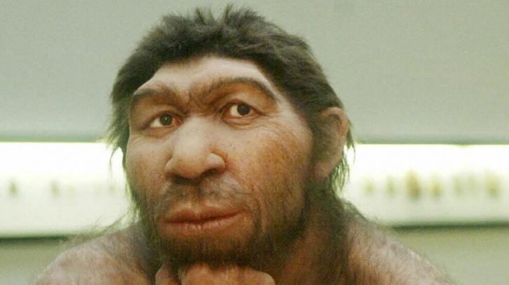 Ce trăsături îți arată că te tragi din neanderthalieni