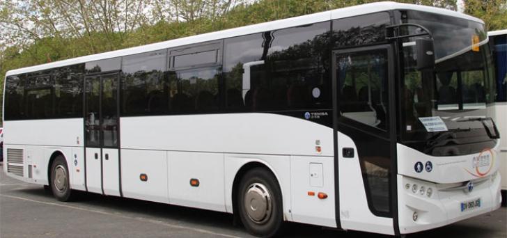 Turcii mai câștigă o licitație în România. MAI dă 46 de milioane de euro pe 326 de autobuze