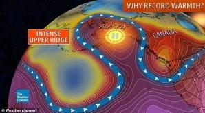 Alaska sub un val de căldură teribilă