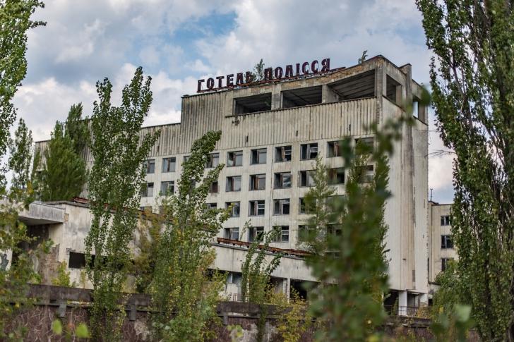 De ce plantele de la Cernobîl sunt imune la radiații