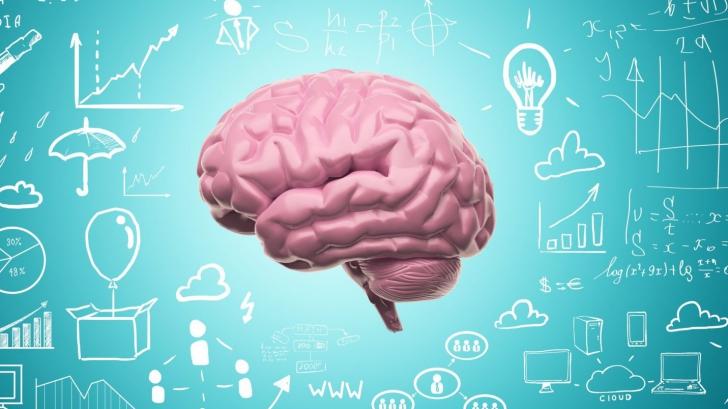 Câtă încredere ar trebui să ai în jocurile care îți promit stimularea inteligenței?