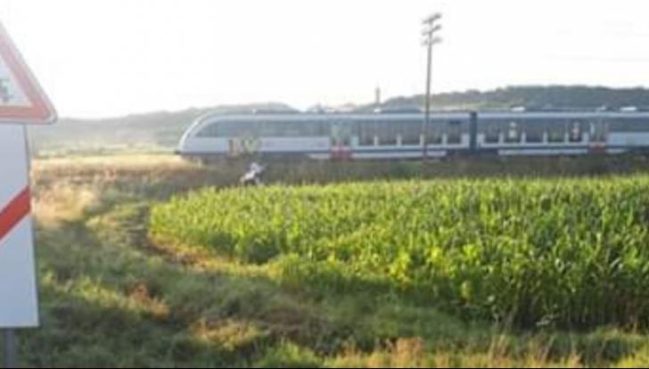 Accident feroviar la Reghin