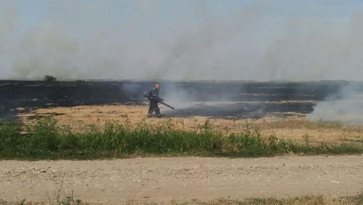 Intervenție pompieri incendiu de vegetație - imagine de arhivă