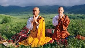 Dieta cu orez a călugărilor japonezi
