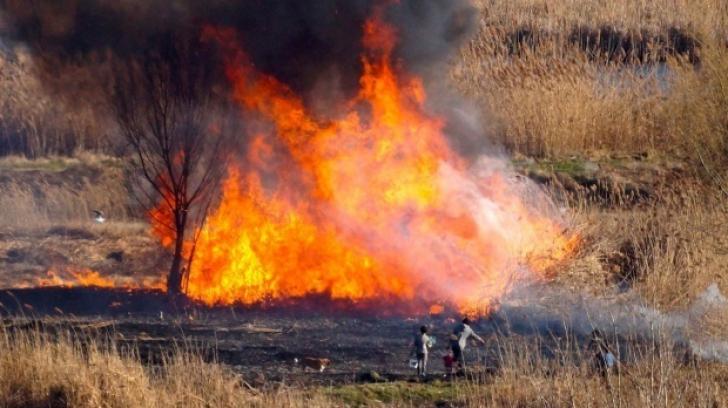 Caz tragic în Giurgiu: Bărbat ars de viu într-un incendiu de vegetație uscată