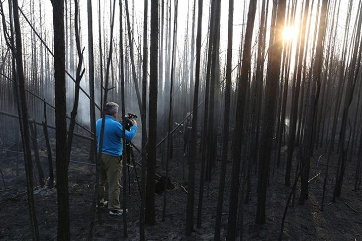 Incendii de vegetație în estul Rusiei