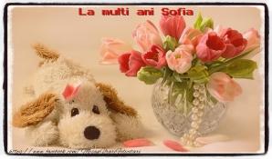 Sfânta Sofia 2019, 17 septembrie. Mesaje LA MULȚI ANI pentru Sofia. Felicitări pentru Sofia!