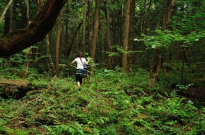 <p>Cea mai terifiantă pădure din lume ascunde un SECRET ORIBIL! Autorităţile sunt depășite! Copacii...</p>