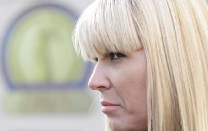 Elena Udrea, prima declarație publică după ce s-a întors din Costa Rica