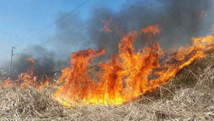 Un incendiu a dat peste cap traficul pe calea ferată între Focșani și București