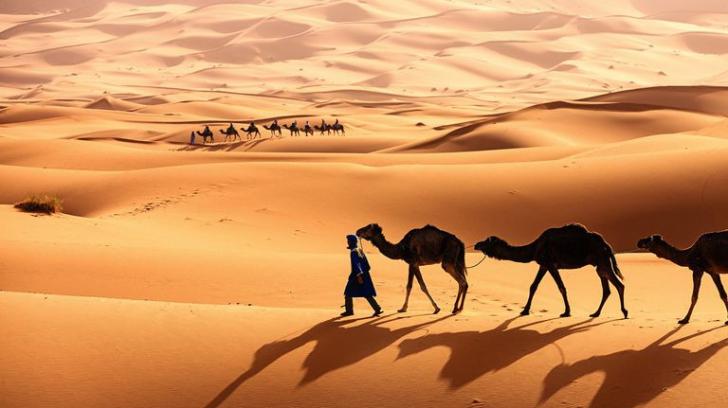 Sahara a fost cândva sub ape! Transformarea prin care ar putea trece acum Pământul