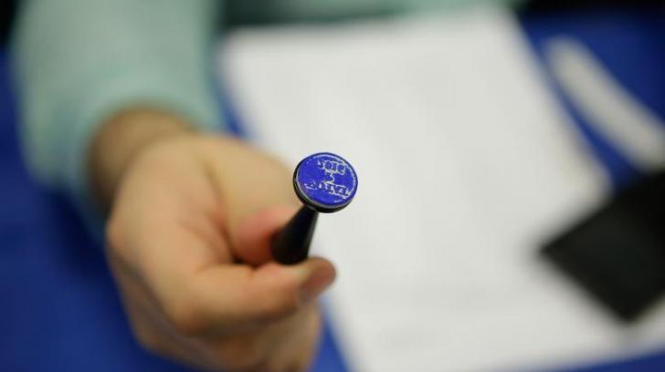 Românii din diaspora mai au 2 zile pentru a se înscrie pentru votul prin corespondență