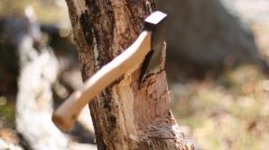 Un alt pădurar a căzut victima mafiei lemnului