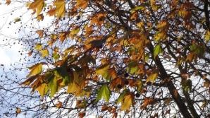 Prognoza meteo a fost revizuită. Schimbări spectaculoase: cum va fi vremea până pe 11 noiembrie