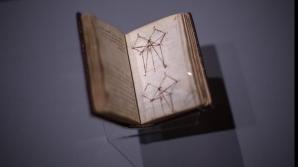 Tablou misterios descoperit în Franța