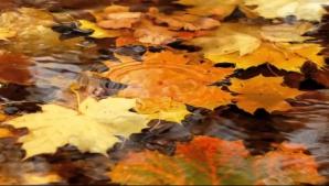 Prognoza meteo, revizuită. Schimbări spectaculoase: cum va fi vremea până pe 25 noiembrie