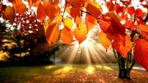 Prognoza meteo a fost revizuită. Schimbări spectaculoase: cum va fi vremea până pe 18 noiembrie