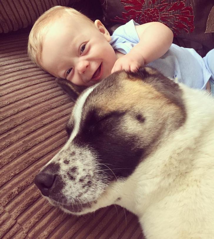 Câinele lătra întruna la pântecele gravidei. Când tânăra a mers la doctor, a primit o veste șocantă