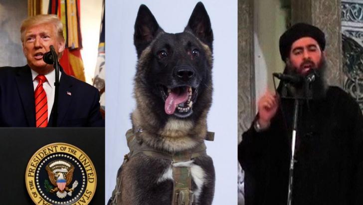 """Poză uluitoare postată de Trump după uciderea șefului ISIS. """"A fost rănit în misiune"""""""