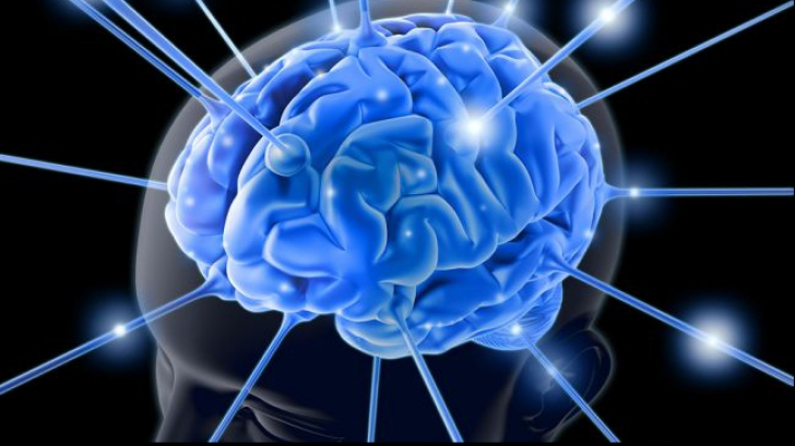 Amigdala cerebrală