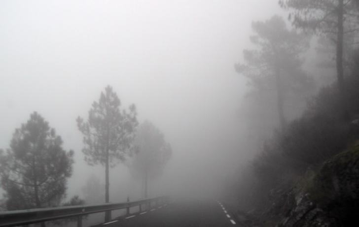 ALERTĂ METEO. Cod galben de ceață