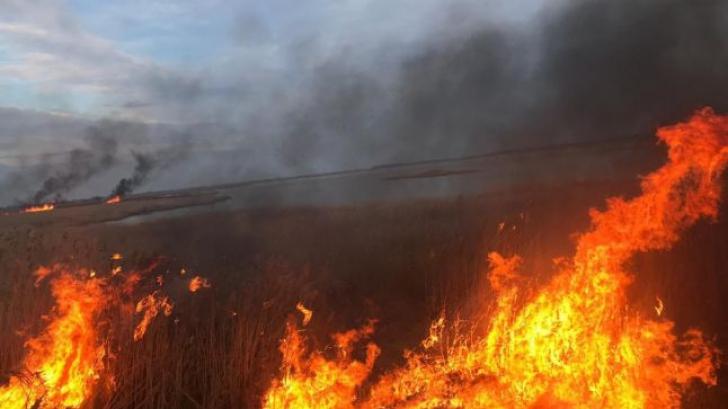 Incendii - imagine de arhivă