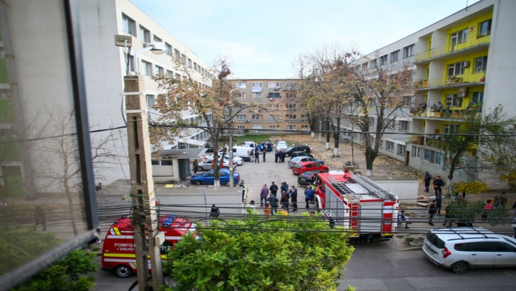 Patronul firmei care a efectuat deratizările din Timișoara a fost reținut