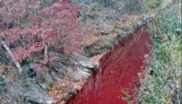 Râul Imjin, Coreea de Sud, dupăpoluare Foto: bbc.com