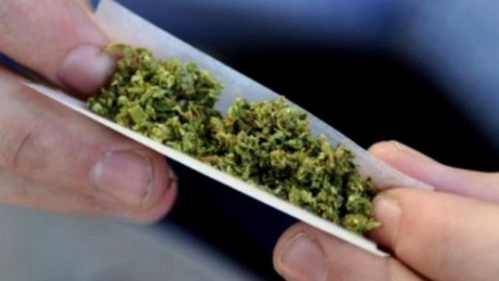 Initiatoarea proiectului USR privind drogurile: -Nu bagam tinerii la puscarie-