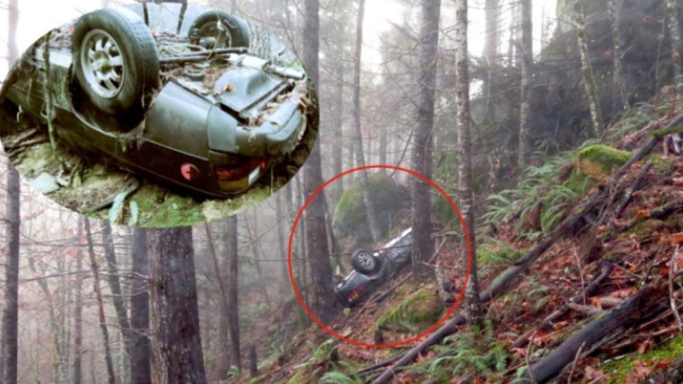 Mașină dispărută în urmă cu 27 de ani, găsită în pădure, înfiptă în pom. Oribil ce era lângă ea!