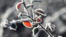 ALERTĂ METEO. Meteorologii au emis cod GALBEN de fenomene SEVERE