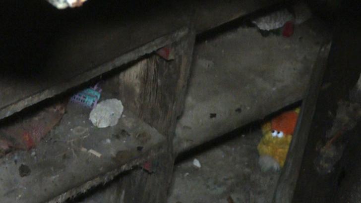 Descoperire tulburătoare, în camera secretă de sub garaj: