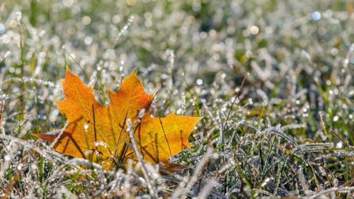 Prognoza meteo săptămâna 20.01.2020 – 27.01.2020   Temperatura aerului va avea valori ce se vor situa, în general, peste limitele specifice perioadei, îndeosebi în regiunile extrecarpatice.  Cantitățile de precipitații estimate pentru această săptămână vor fi deficitare în majoritatea regiunilor, dar mai ales în cele extracrapatice. Excepție este posibil să facă partea de nord a teritoriului, unde va exista o tendință spre excedent.  Prognoza meteo săptămâna 27.01.2020 – 03.02.2020   Temperatura aerului va avea valori ce se vor situa peste limitele specifice perioadei, mai ales în regiunile sudice și estice.  Cantitățile de precipitații vor putea avea, în general, o tendință ușor excedentară în regiunile intracarpatice și vor fi apropiate de normalul perioadei în restul teritoriului.  Prognoza meteo săptămâna 03.02.2020 – 10.02.2020   Mediile valorilor termice se vor situa, în general, ușor peste limitele specifice perioadei.  Cantitățile de precipitații estimate pentru această perioadă vor fi, în general, apropiate de cele normale pentru acest interval, local cu o posibilă tendință ușor deficitară.  Prognoza meteo săptămâna 10.02.2020 – 17.02.2020   Mediile valorilor termice vor fi apropiate de normalul săptămânii în zonele de munte și se vor situa, în general, ușor peste limitele specifice perioadei în restul zonelor.